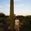 A community cactus
