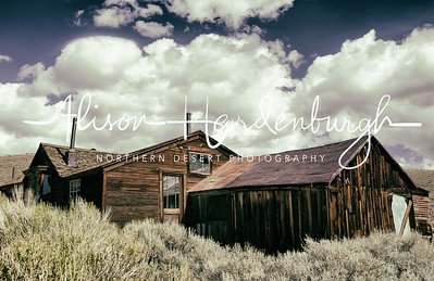Ghost House, Bodie