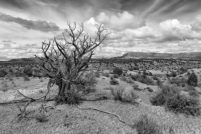 Grand Staircase - Escalante National Monument. Honorable Mention, B&W Prints, N4C Sept 2015