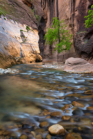 Zion: The Narrows