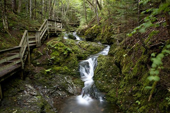 Dickson Falls, Fundy NP