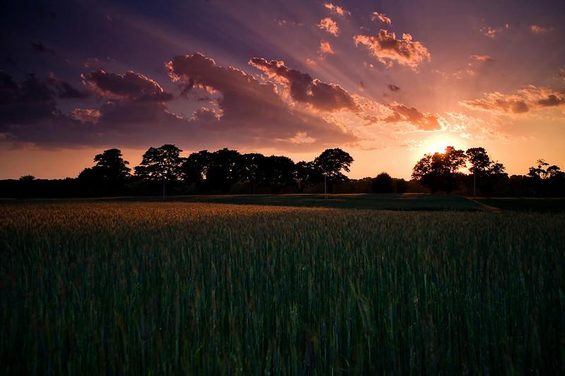 Sunset near the sod farms of RI