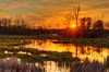 Marsh sunset, NH, order limited addition print of 100