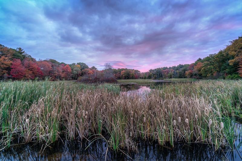 Fall Sunrise - DelCarte Conservation Area Franklin MA - Tom Sloan