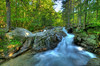 Silky Stream: NH. Order limited addition print of 100
