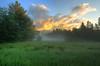Morning Mist: Bartlett, NH. Order limited addition print of 100