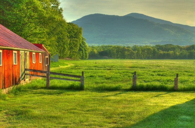 Farmer's Field, NH. Order limited addition print of 100