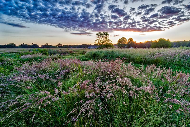 Sunrise - Franklin Farm - Cumberland RI - Tom Sloan