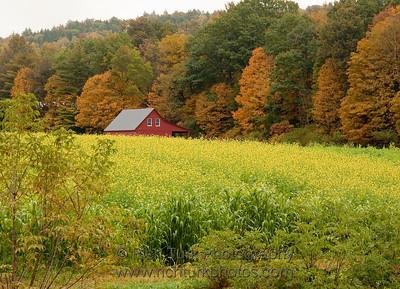 Farm near Cornish, New Hampshire
