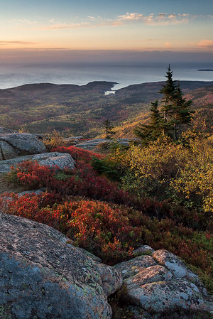 The view from Cadillac Mountain at daybreak  in Acadia National Park