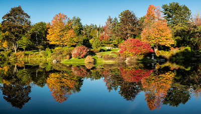 The Asticou Azalea Gardens in the town of Northeast Harbor on Mount Desert Island.