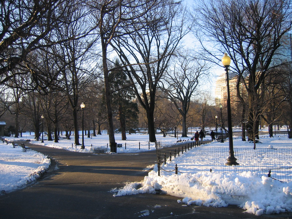 Boston Common Garden, Winter Scene