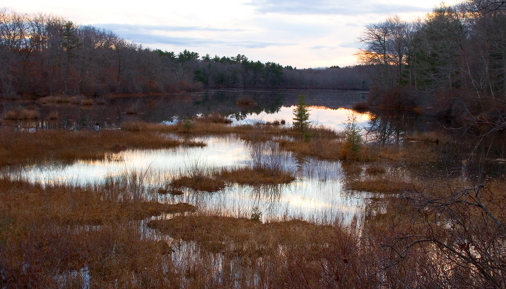 Marsh View, Dusk<br /> Borderland State Park
