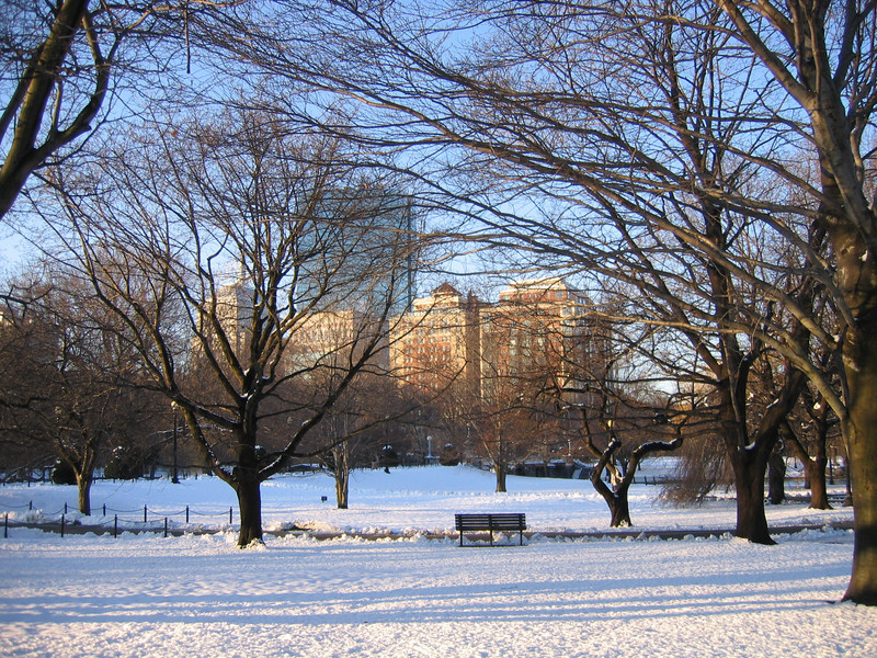 Winter, Boston Common Gardens