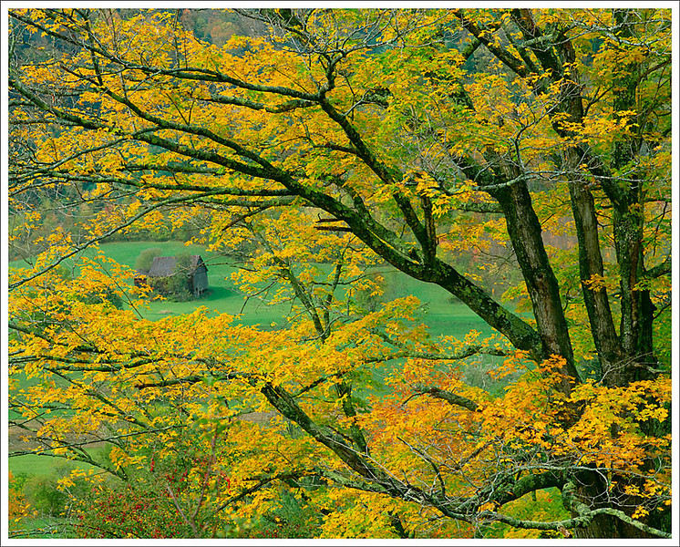 Vermont Farm among Foliage