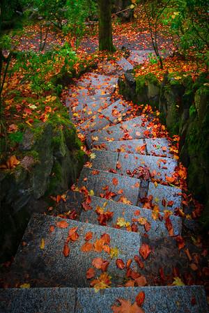 Steps Of Seasons And Color - Portland Japanese Garden, Oregon St