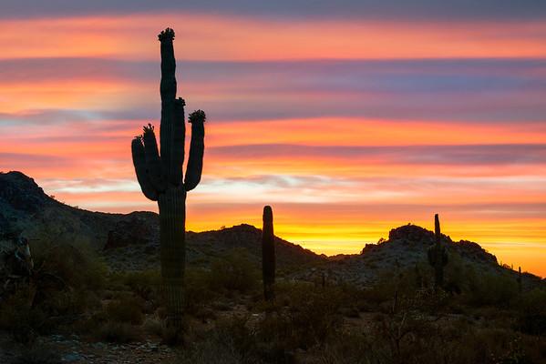 Stripes Of An Arizona Sunset - Phoenix, Arizona