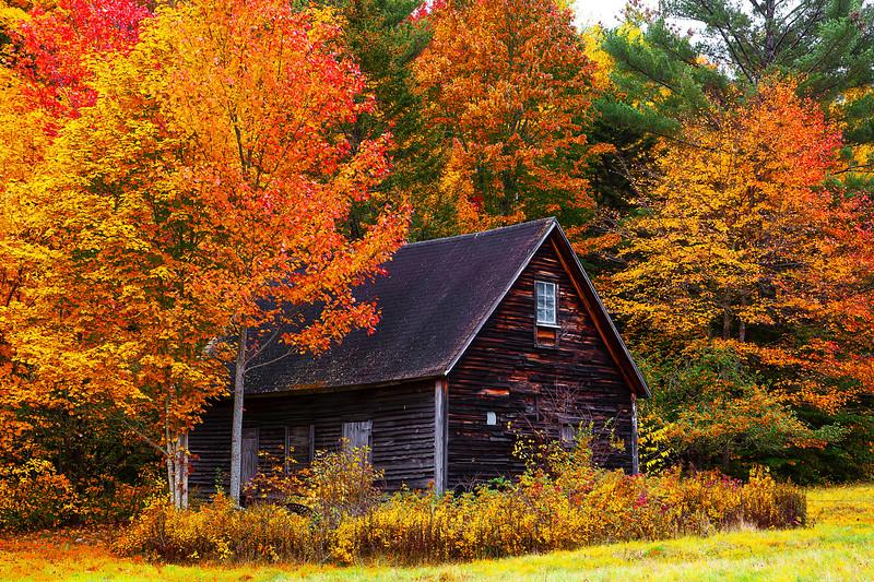 Fall Colors, New Hampshire, 新罕布什尔州, 秋色