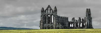 Whitby Abbey Wheatfields