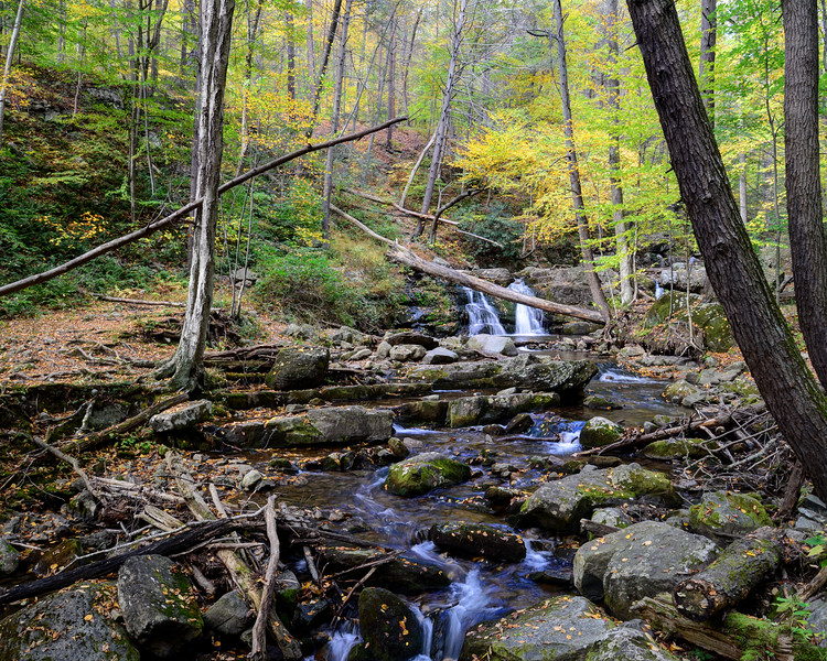 Appalachian Trail, Delaware Water Gap National Park, New Jersey