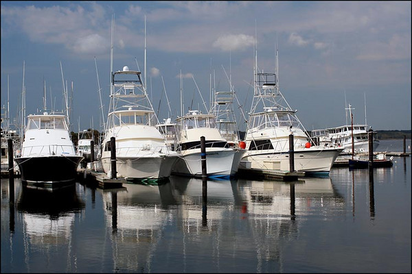 The Belmar Marina (67646207)