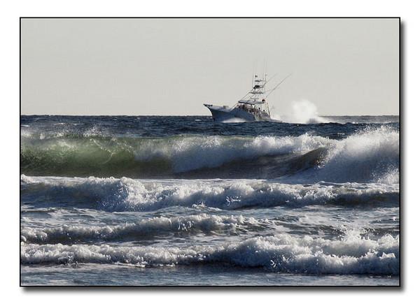 Surfs Up (52009836)