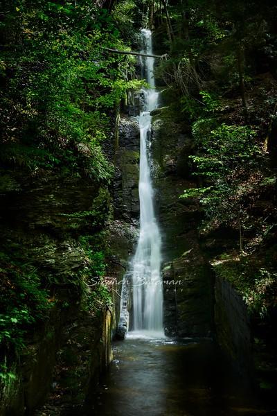 Dingman, Silverthread Falls, Spring