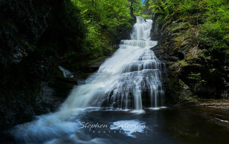 Dingman falls Spring