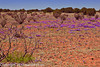 A landscape taken April 27, 2012 near Santa Rosa, NM.