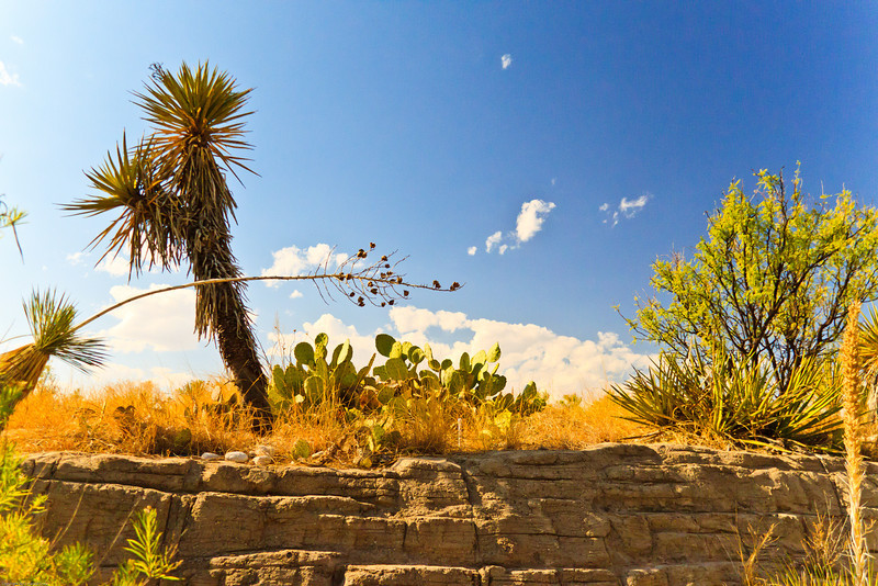 A landscape taken July 20, 2011 near Carlsbad, NM.