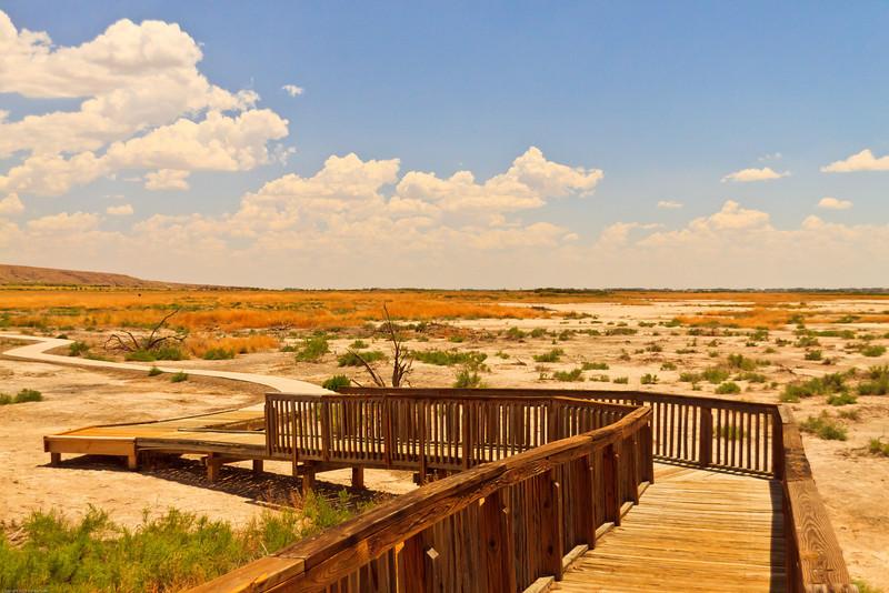 A landscape taken July 18, 2011 near Roswell, NM.