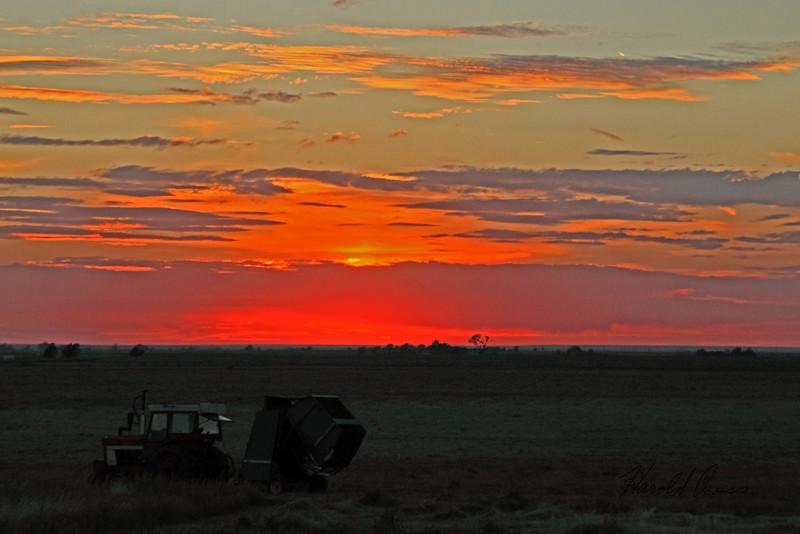 A landscape  taken Oct. 4, 2010 near Portales, NM.