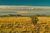 A landscape taken Nov. 1, 2011 near Soccorro, NM.