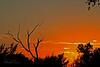 A landscape  taken Oct 4, 2010 near Portales, NM.