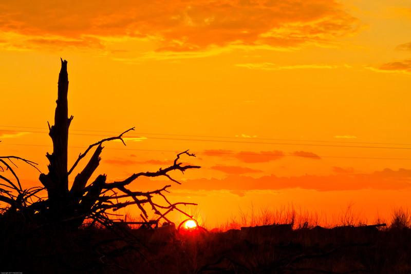 A landscape taken July 4, 2011 near Portales, NM.