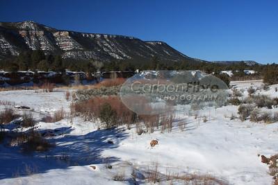 Pecos River, Pecos, New Mexico