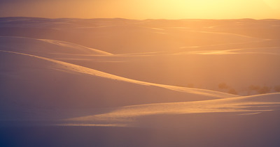 Sunrays, Colours & White Dunes