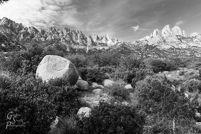 Organ Mountains Morning in black and white