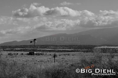 Looking southward towards the Sandia Mountains.