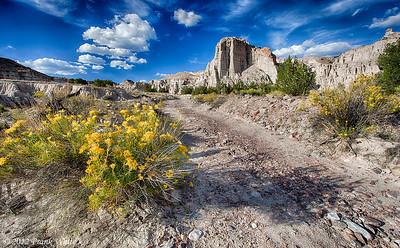 Rabbit bush and clouds, Plaza Blanco, Abiquiu, New Mexico.