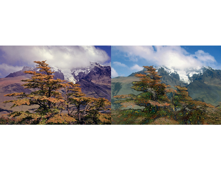 Patagonia diptych