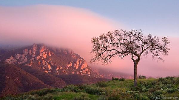 Santa_Monica_Mountains_Boney_Mountain_Inland_Crawl