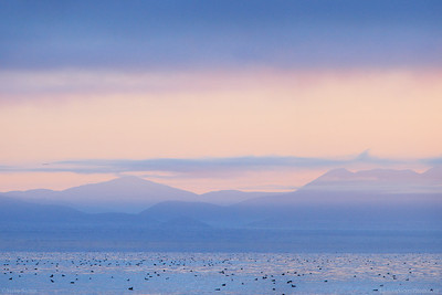 Mono_Lake_Pastoral_Sea_Dawn_B