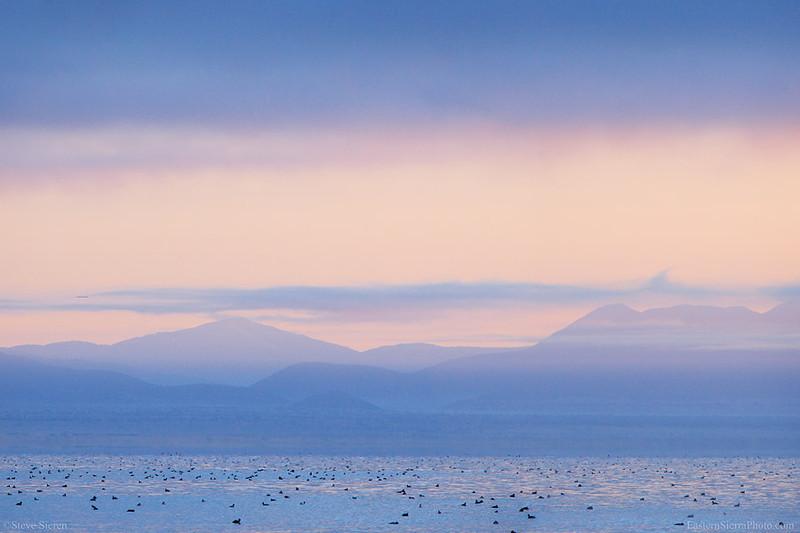 Mono_Lake_Pastoral_Sea_Dawn_B