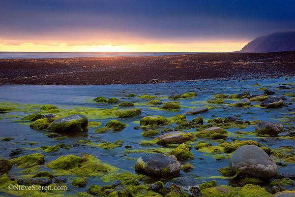 Green Sunset California's Lost Coast in Northern California