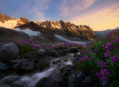 Flowers Cascades