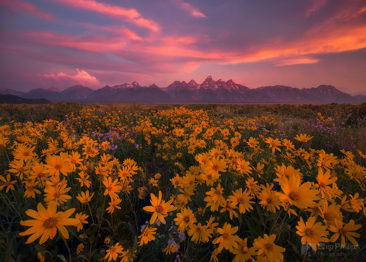 Antelope Valley Sunrise 3