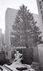 nyc_dec  1984-015