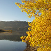 Fall in Cromwell, Central Otago