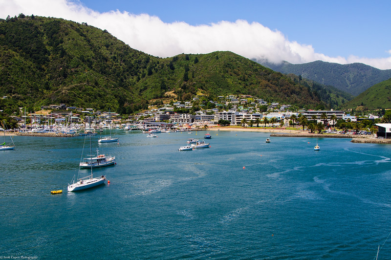 Picton Harbor, South Island New Zealand